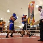 euroliga box one arad