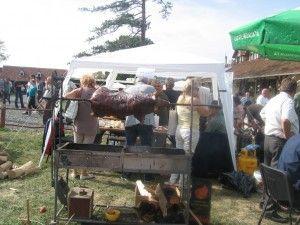 festival bata